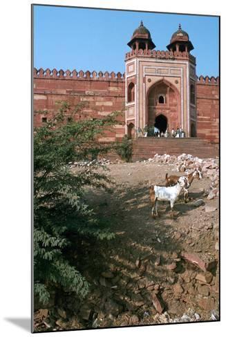 Buland Darwaza, Fatehpur Sikri, Agra, Uttar Pradesh, India-Vivienne Sharp-Mounted Photographic Print
