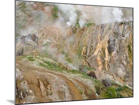 Stain Glass Wall and Geyser River in Valley of the Geysers, Kronotsky Zapovednik, Kamchatka, 2006-Igor Shpilenok-Mounted Photographic Print