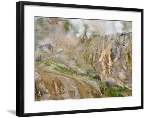 Stain Glass Wall and Geyser River in Valley of the Geysers, Kronotsky Zapovednik, Kamchatka, 2006-Igor Shpilenok-Framed Art Print
