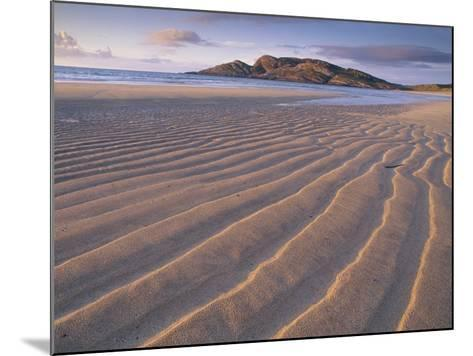 Sand Patterns on the Beach Coll Inner Hebrides, Scotland, UK-Niall Benvie-Mounted Photographic Print