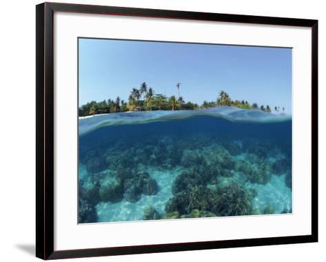 Split-Level Shot of Coral Reef and Shore, Phillippines-Jurgen Freund-Framed Art Print