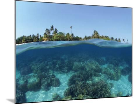 Split-Level Shot of Coral Reef and Shore, Phillippines-Jurgen Freund-Mounted Photographic Print