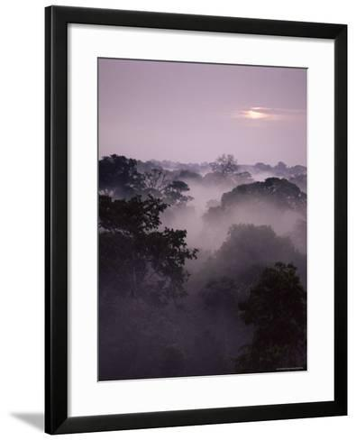 Dawn Over Canopy of Tai Forest, Cote D'Ivoire, West Africa-Michael W^ Richards-Framed Art Print