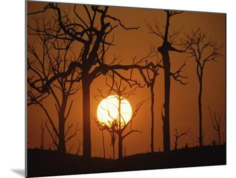 Sunset in Tropical Rainforest after Destruction by Fire, Brazil-Martin Dohrn-Mounted Photographic Print
