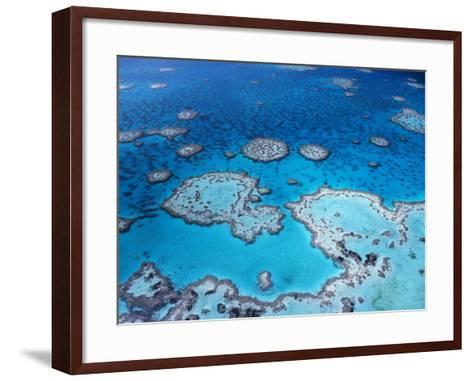 Aerial View of Hardy Reef, Great Barrier Reef and Sea, Queensland, Australia-Jurgen Freund-Framed Art Print