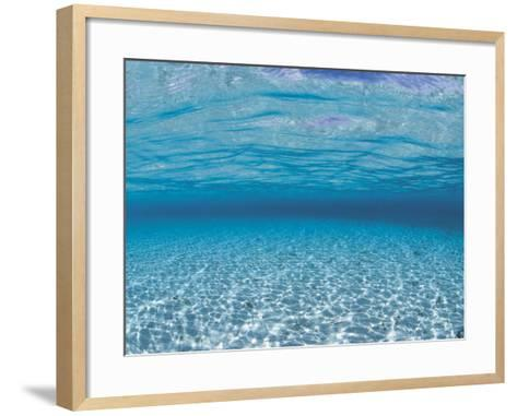 Sandy Seabed Underwater View, Indo-Pacific-Jurgen Freund-Framed Art Print