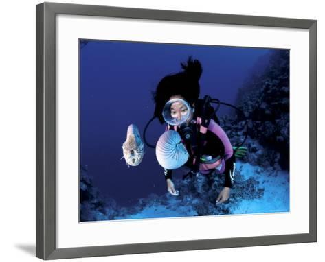 Diver with Pair of Pearly Nautilus, Great Barrier Reef, Queensland, Australia-Jurgen Freund-Framed Art Print