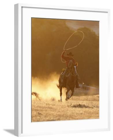 Cowboy Galloping While Swinging a Rope Lassoo at Sunset, Flitner Ranch, Shell, Wyoming, USA-Carol Walker-Framed Art Print