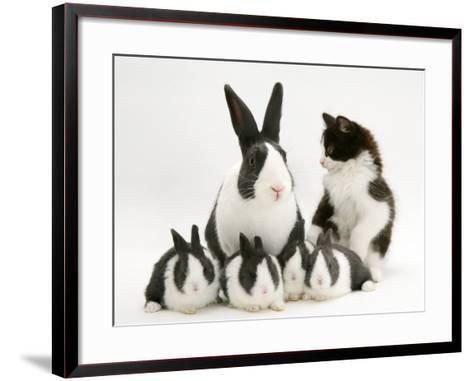 Blue Dutch Rabbit and Four 3-Week Babies and Black-And-White Kitten-Jane Burton-Framed Art Print