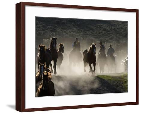 Cowboys Driving Horses at Sombrero Ranch, Craig, Colorado, USA-Carol Walker-Framed Art Print