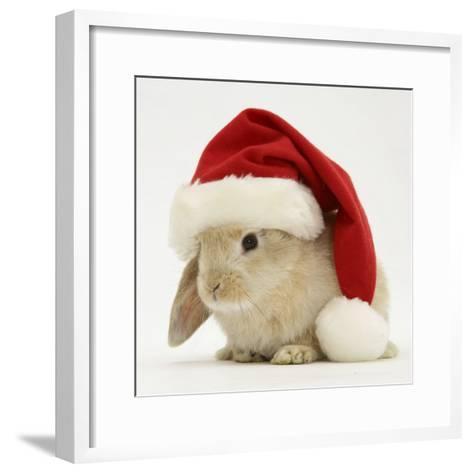 Rabbit Wearing a Father Christmas Hat-Jane Burton-Framed Art Print