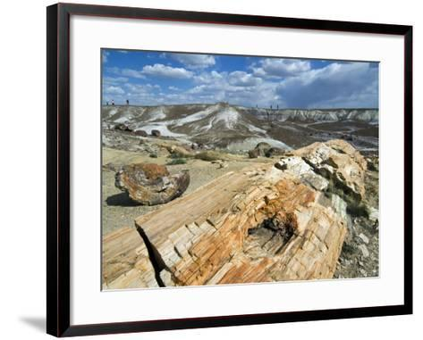 Petrified Logs Exposed by Erosion, Painted Desert and Petrified Forest, Arizona, Usa May 2007-Philippe Clement-Framed Art Print