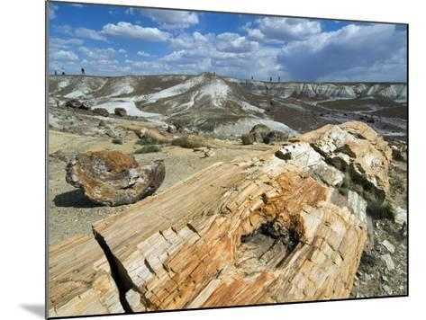 Petrified Logs Exposed by Erosion, Painted Desert and Petrified Forest, Arizona, Usa May 2007-Philippe Clement-Mounted Photographic Print