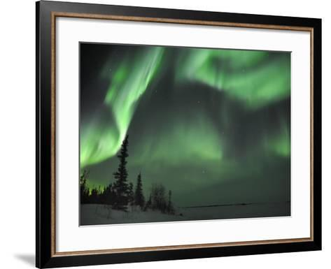 Northern Lights Northwest Territories, March 2008, Canada-Eric Baccega-Framed Art Print