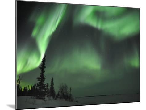 Northern Lights Northwest Territories, March 2008, Canada-Eric Baccega-Mounted Photographic Print