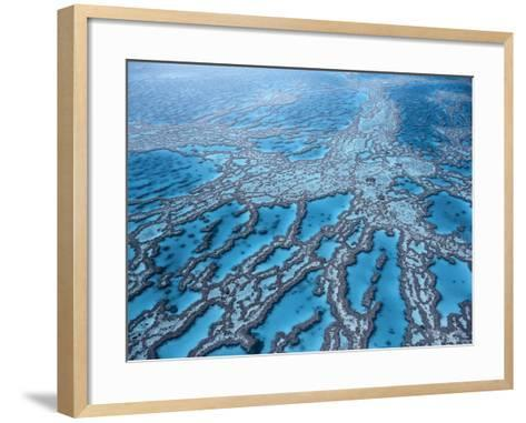 Aerial View of Great Barrier Reef, Queensland, Australia-Jurgen Freund-Framed Art Print