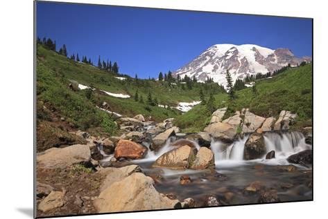 Mount Rainier and Mountain Stream, Washington State, USA-Mark Taylor-Mounted Photographic Print