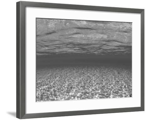 Sandy Seabed Underwater View, Indo-Pacific-Jurgen Freund-Framed Art Print