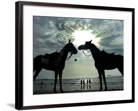 Horses, Used for Joyrides, Stand on the Beach--Framed Art Print