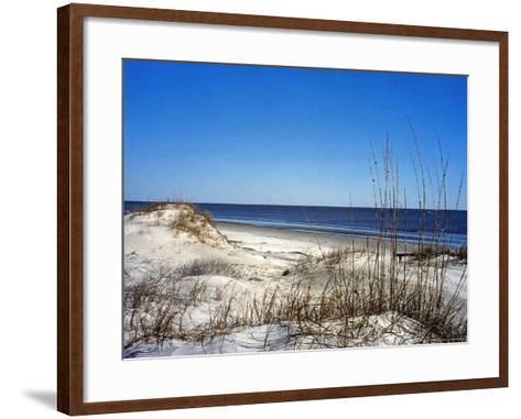 Pristine Dunes on Jekyll Island, Georgia-Giovanna Dell'orto-Framed Art Print