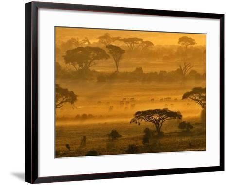 Herbivores at Sunrise, Amboseli Wildlife Reserve, Kenya-Vadim Ghirda-Framed Art Print