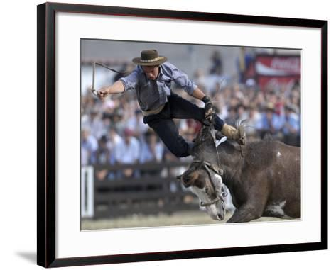 Gaucho, or Cowboy, is Thrown from a Horse as He Competes in a Rodeo in Montevideo--Framed Art Print