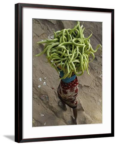 Indian Farmer Carries Cucumbers to Sell in the Market on the Outskirts of Allahabad, India--Framed Art Print