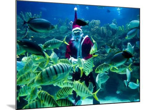 Diver Dressed as Santa Claus Feeds Fish as Part of Christmas Celebrations, Aquarium in Kuala Lumpur--Mounted Photographic Print