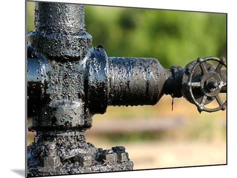 A Control Valve of an Oil Pump--Mounted Photographic Print