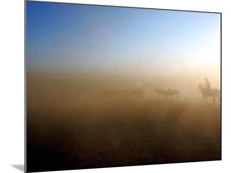 A Herd of Horses is Taken out Runs Across the Grounds Near a Temporary Race Course Ground--Mounted Photographic Print