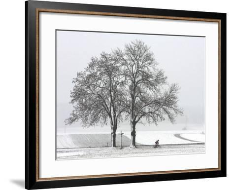 Cyclist Passes a Tree Covered with Snow, Southern Germany--Framed Art Print