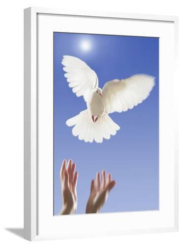 White Dove--Framed Art Print