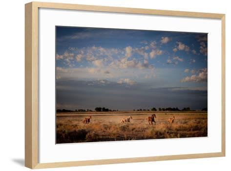 Open Spaces-Dan Ballard-Framed Art Print