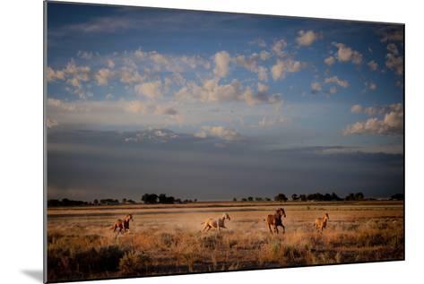 Open Spaces-Dan Ballard-Mounted Photographic Print