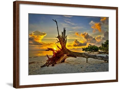 Sanibel Sunrise-Dennis Goodman-Framed Art Print