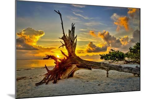 Sanibel Sunrise-Dennis Goodman-Mounted Photographic Print