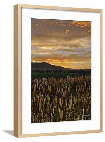 Sunset over Bear Tooth-Amanda Lee Smith-Framed Art Print