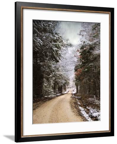 Winter Paradise-Jai Johnson-Framed Art Print