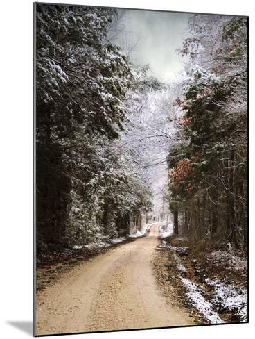 Winter Paradise-Jai Johnson-Mounted Photographic Print