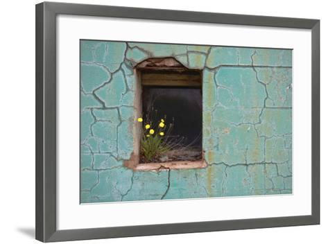 Window 3-Wayne Bradbury-Framed Art Print