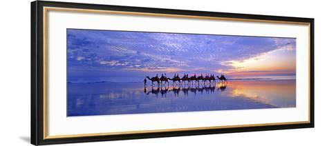 Cable Beach Camels-Wayne Bradbury-Framed Art Print