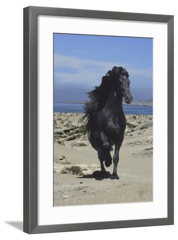 Fantasy Horses 08-Bob Langrish-Framed Art Print