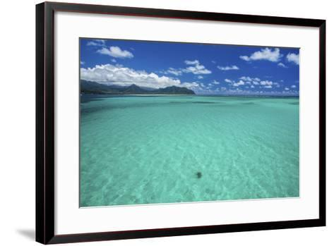 Sea Turtle-Cameron Brooks-Framed Art Print