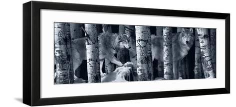 Silver Tone Moon Shadows 2-Gordon Semmens-Framed Art Print