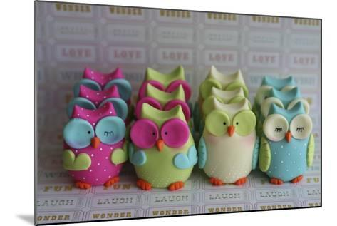 Owls Multi Color Brights Large Set--Mounted Photographic Print