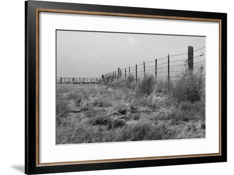 Tumbleweed Fences and Sheep-Amanda Lee Smith-Framed Art Print