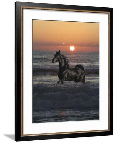 Shadow Walker-Bob Langrish-Framed Art Print