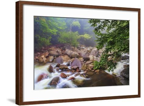 Around the Boulders-Bob Rouse-Framed Art Print