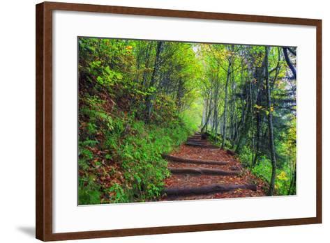 Appalachian Trail 3-Bob Rouse-Framed Art Print