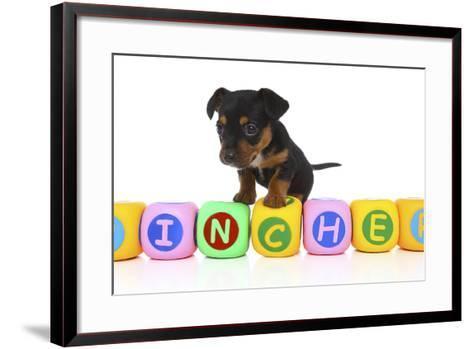 Puppies 062-Andrea Mascitti-Framed Art Print